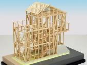 1/50カラー構造模型