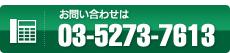 TEL03-5273-7613